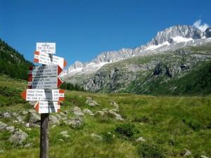 trekkingadamello